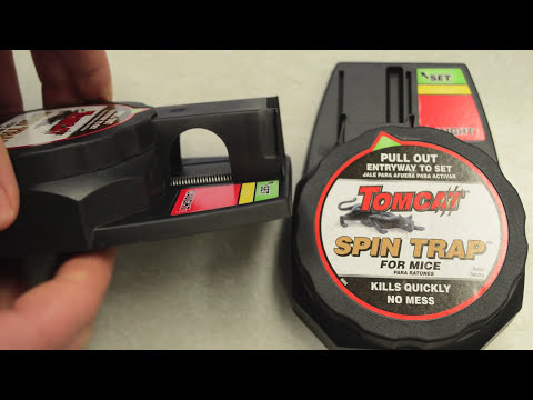 Tom Cat Spin Trap Mouse Trap In Action with Motion Cameras. Mouse Trap Mondays