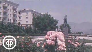Каким быть Новороссийску? Новостройки Новороссийска. Новости. Эфир 4 августа 1978
