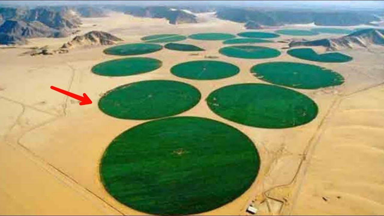 সৌদি আরবে জল কোন জায়গা থেকে আসে   How does Saudi Arabia get water   water crisis in Saudi Arabia