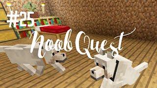 DOG MAKEOVER - NOOB QUEST (EP.25)