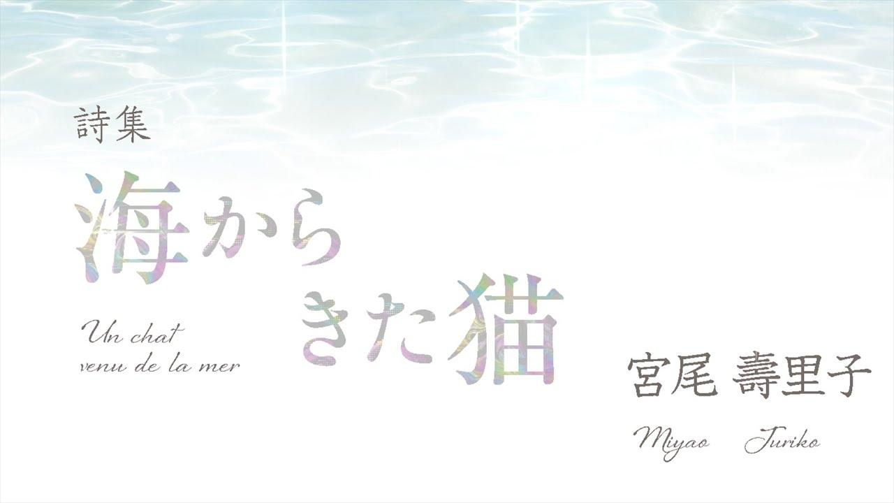 海からきた猫 - Un chat venu de la mer (詩:宮尾 壽里子/ Poéme: Juriko Miyao )