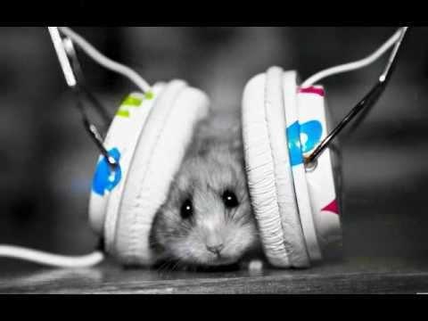 you got the love sosumi ft. misy dj