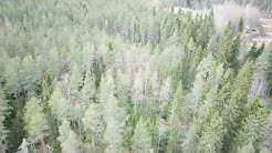 Alajärvi, Lehtimäki, Suihtikallio 3:197
