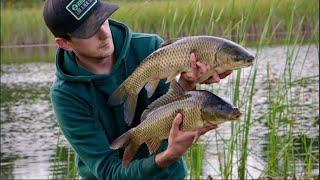 Перший день осені. Рибалка на новому озері ловля коропів
