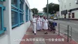 2015-16 新界鄉議局元朗區中學 一號候選內閣 Cosm