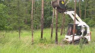 Bobcat Forestry Cutter vs tree- outside view