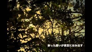 河口恭吾 - 紅茶月夜(Album Version)