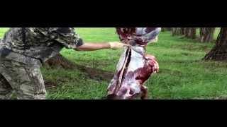 Deadeye Deer Process - Doe On The Farm