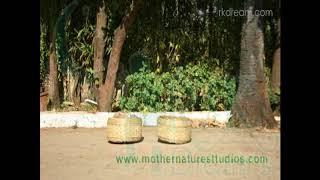 Bhullar Market Malad - Mother Nature Studios Mumbai