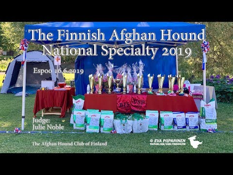 The Finnish Afghan Hound National Specialty 2019