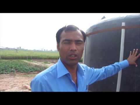 3 Types Bio Gas Plant Generating Electricity Organic Fertilizer for Crops 16 Mar 2011 NARC Pakistan