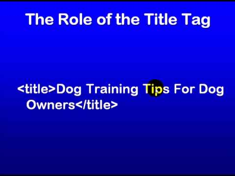 SEO Education 101 The Role of the Title Tag
