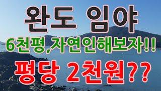 [부동산 경매물건] 전남 완도 소안면 임야!! 6천평 …