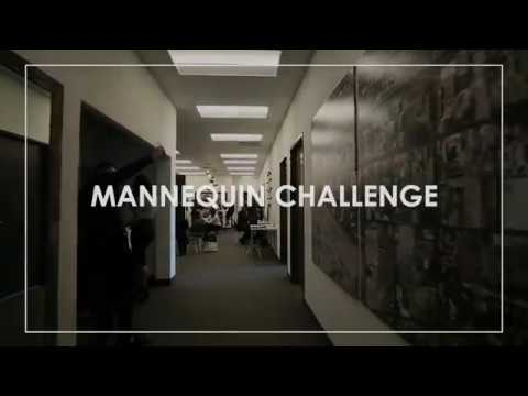 Luxury Real Estate Brokerage Accepts Mannequin Challenge