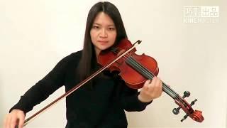 Camila Cabello - Havana(Violin Cover)