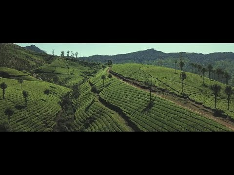 Kerala | India's Paradise Found