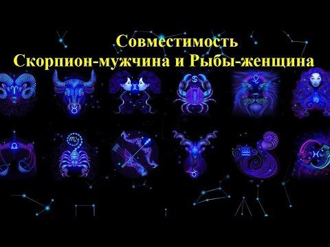 Совместимость Скорпион-мужчина и Рыбы-женщина