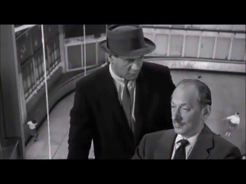 The Lineup (1958) Vaughn Taylor/Eli Wallach scene 2 - YouTube