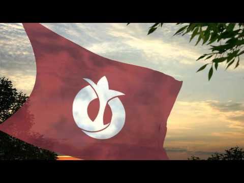 Flag of the Aichi Prefecture