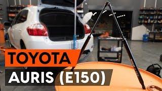 Kuinka vaihtaa takaluukun kaasujousi TOYOTA AURIS 1 (E150) -merkkiseen autoon [AUTODOC -OHJEVIDEO]