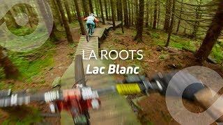 Baixar LA ROOTS, Lac Blanc bike park, France