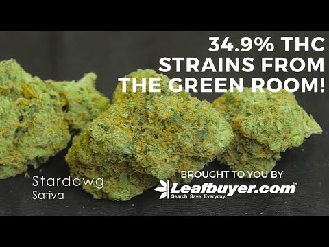 Dispensary Highlight - The Green Room in Boulder, CO