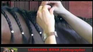 Il Castegno Cristina Scolari-