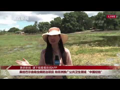 """正在直播:桑给巴尔血吸虫病防治项目 向非洲推广公共卫生领域""""中国经验"""""""
