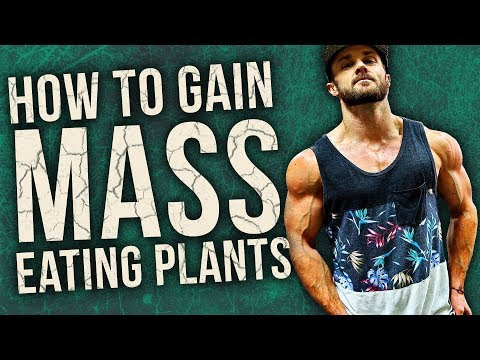 How To Gain MASS On A Vegan Diet