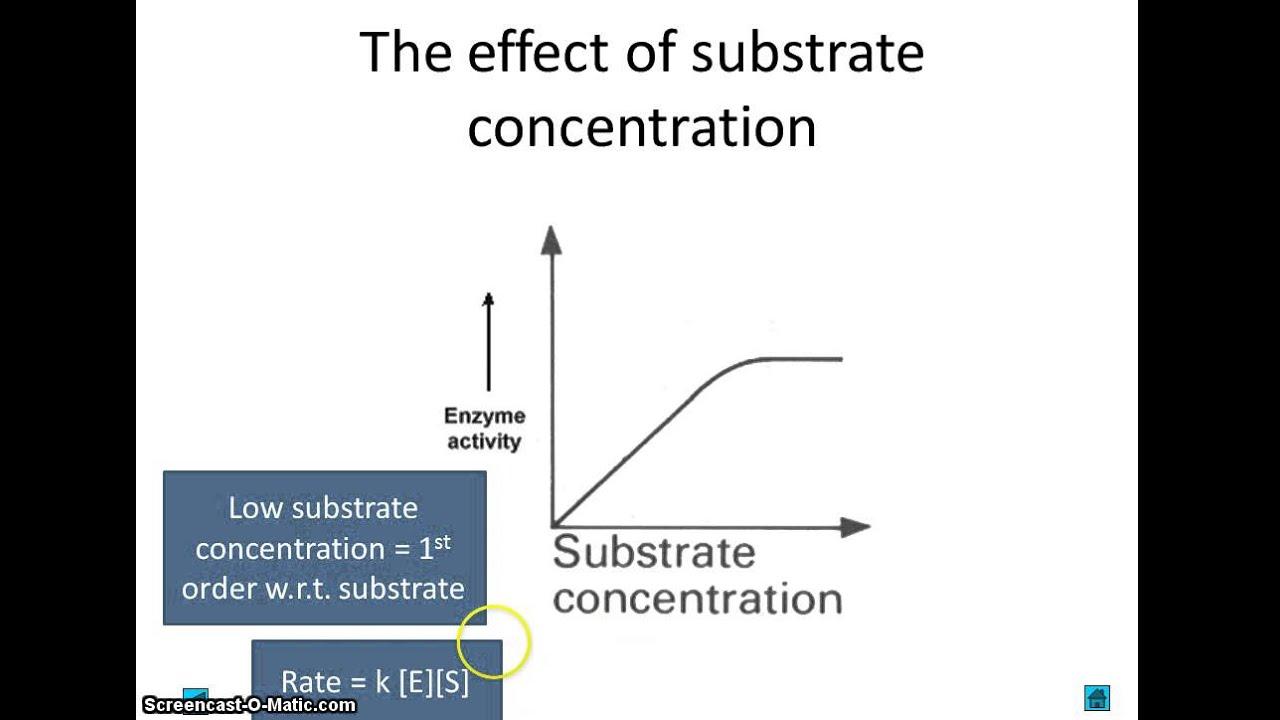 discuss factors that affect enzyme activity