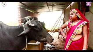 देखिए ये औरत कैसे जानवरों से बात करती है क्या सच में जानवर से बात करती है आप खुद दे || #comedy_video