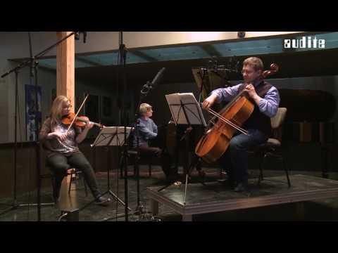Beethoven Complete Works for Piano trio Vol  IV Swiss Piano Trio - Schweizer Klaviertrio