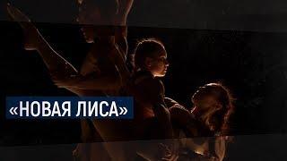 «Новая лиса» / В центре внимания – 04 (20 октября 2018 года)