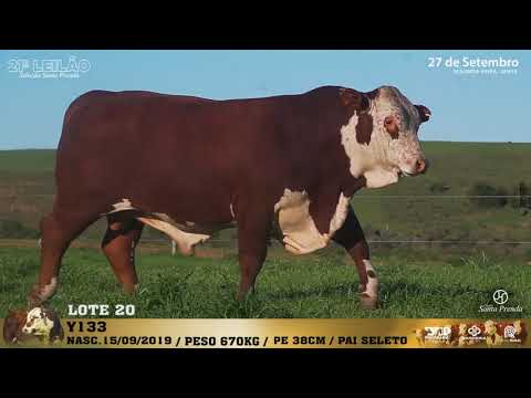 LOTE 020