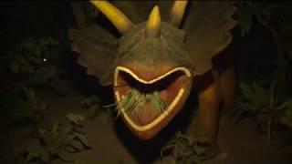 Bạn đã khám phá ???  cong vien khung long dam sen - Dam Sen dinosaur park