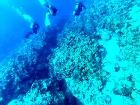 TAR Cayman Islands Neptune's Wall Dive Part 1 04162013