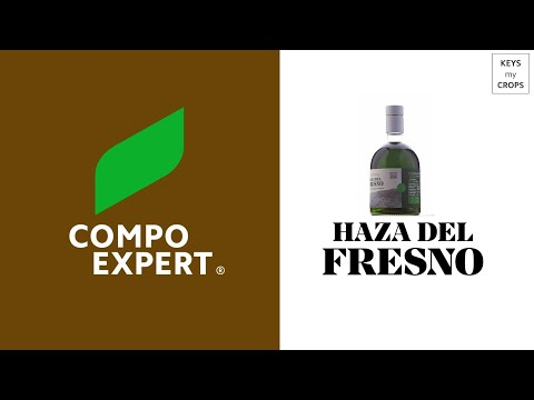 Haza Del Fresno - The view of COMPO EXPERT on this long lasting relationship (english subs)