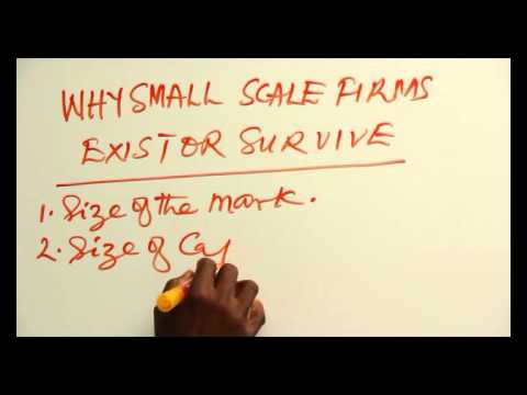 WHY SMALL SCALE FIRMS EXIST OR SURVIVE PART 1