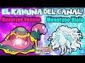 Monotype HIELO VS Monotype VENENO | NINETALES ALOLA Y SU NEVADA!| POKÉMON SOL Y LUNA MONOTYPES video & mp3