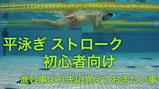 【 平泳ぎ 】 ストローク 初心者 は 進む事より コチラを重視しましょう 【 水泳 】【 競泳 】 thumbnail