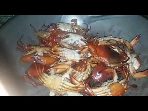 Adobong Crab Ni Kelai