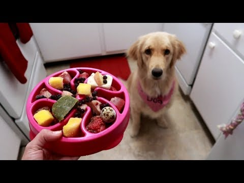 The Hardest Part About My Service Dog's Raw Diet 😫 (7/28/17)