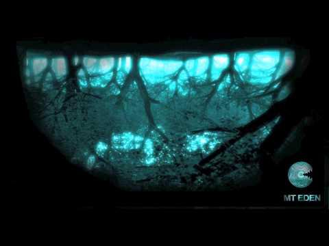 Craig Armstrong - Escape (MT EDEN Remix)
