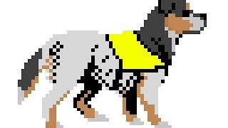Раскраска #87 собака 🐕