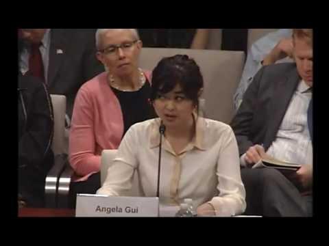 Daughter of HK bookseller Gui Minhai gives testimony at US human rights committee