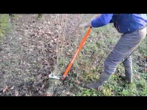 Terrateck - Arrache Arbuste Et Petits Arbres