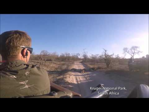 Zimbabwe and South Africa (with Safari in Kruger National Park)