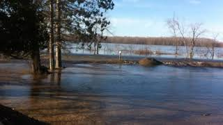 Maugerville Flooding 2018