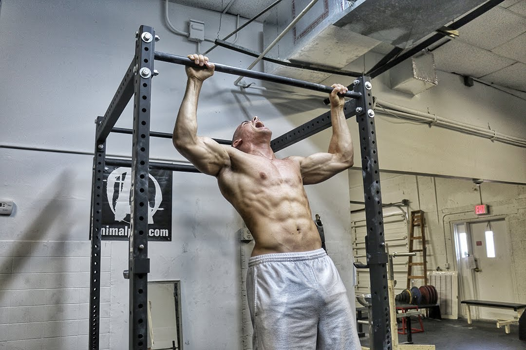 Master complete your first pull up w progressions for Master ohne nc bwl