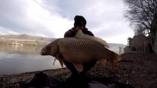 Carpfishing on the River Ebro January 2016 - Zsolt Bundik
